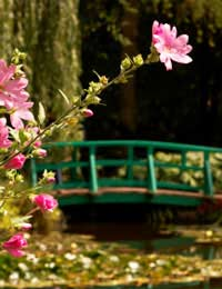 Famous Garden Ponds and Visitor Attractions