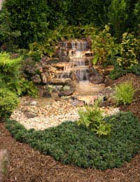 Sizing Your Pond