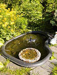 Upgrading Your Water Fountain