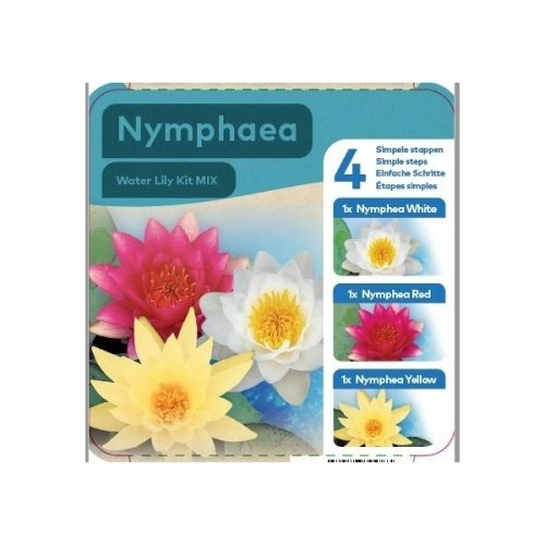Complete Water Plant Pond Kit - Red White and Yellow Water Lily - Nymphaea