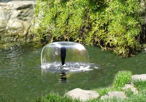PondKraft Solar Fountain Pump 800 Plus with Remote Control and Battery